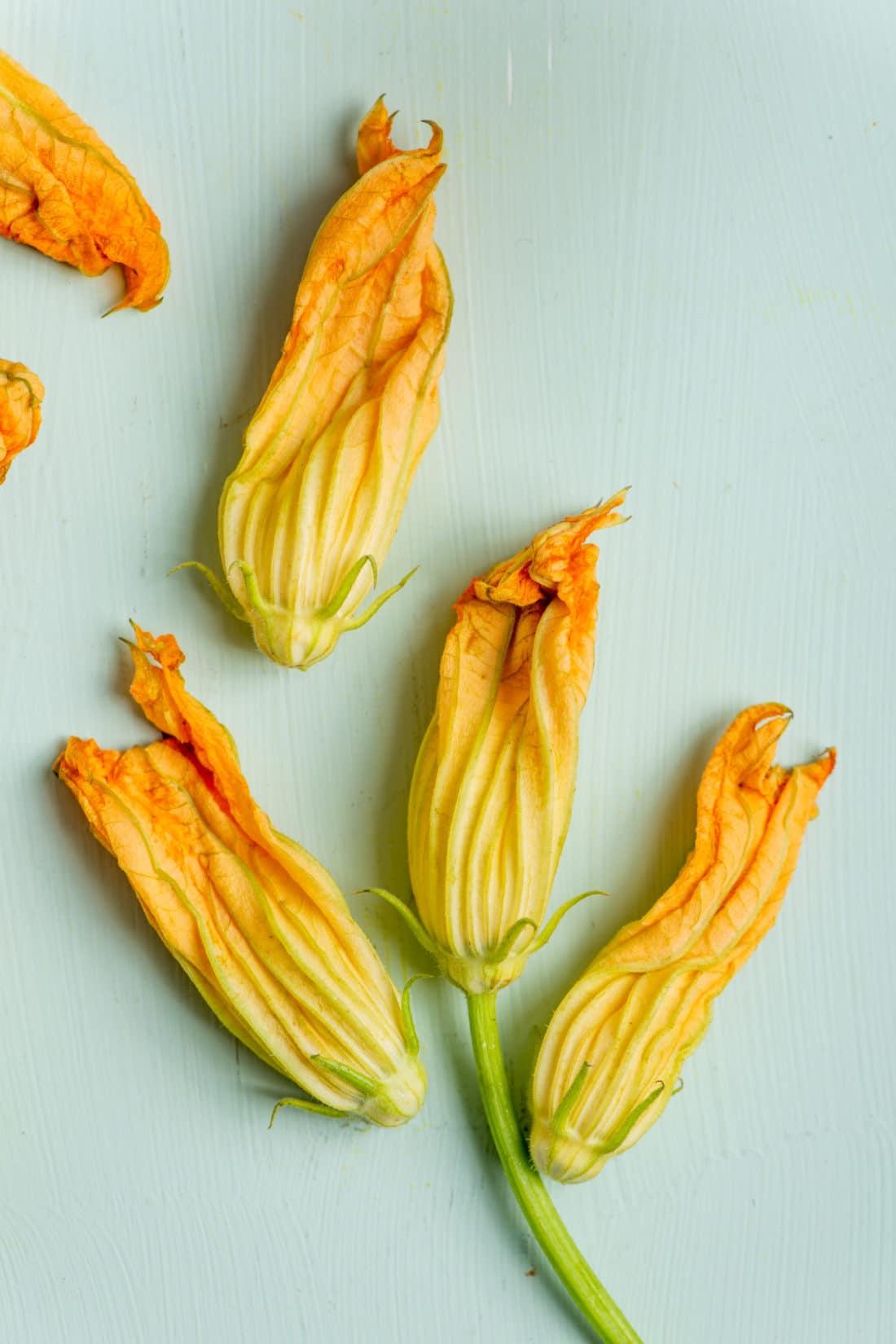What Do I Do With Zucchini Flowers? / Katie Workman / themom100.com / Photo by Cheyenne Cohen