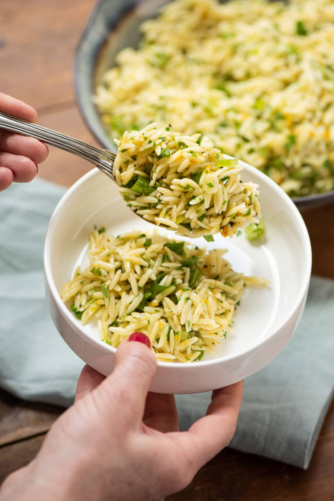 Orzo Recipes Vegetarian