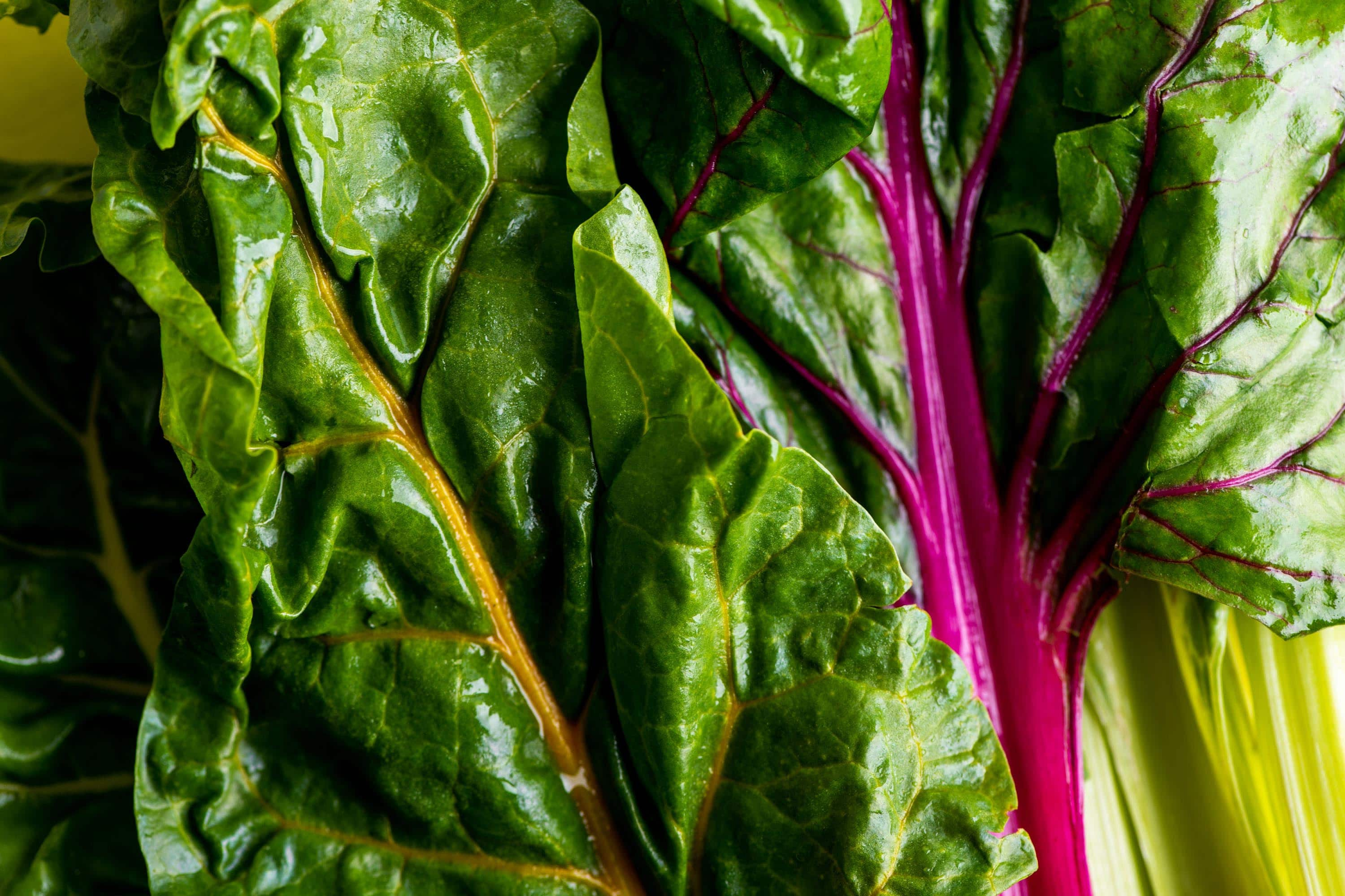 How To Cook Swiss Chard Swiss Chard Recipes The Mom 100