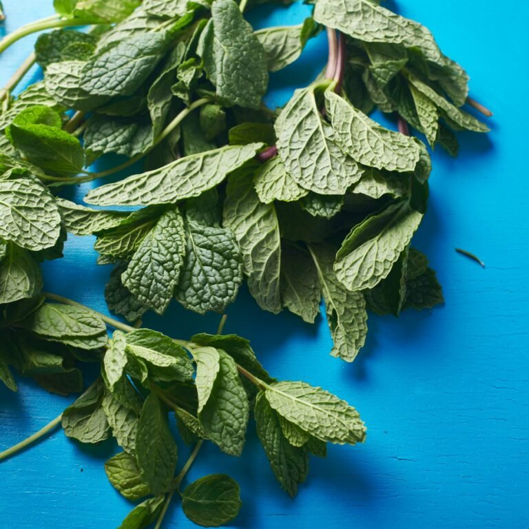 How to Cook with Mint